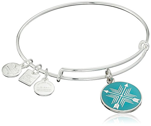 Alex and Ani Arrows of Friendship Expandable Shinny Silver Bangle Bracelet