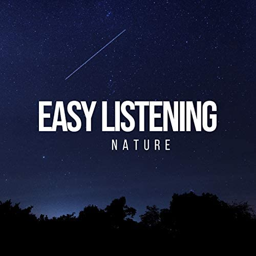 Forest Ambience & Natural Sounds