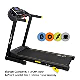 Reach T-301 Incline Motorized Foldable Treadmill with Extra Cushioning with Double Deck (Grey)