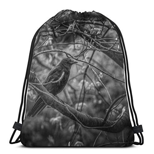 VFBGF Bolsas con cordón Bolsas y cestas de compras Bolsas de compras reutilizables Bolsas de gimnasia Bolsas deportivas Mochilas casuales Peacock Feather (2) Drawstring Backpack Original Tote Bags for