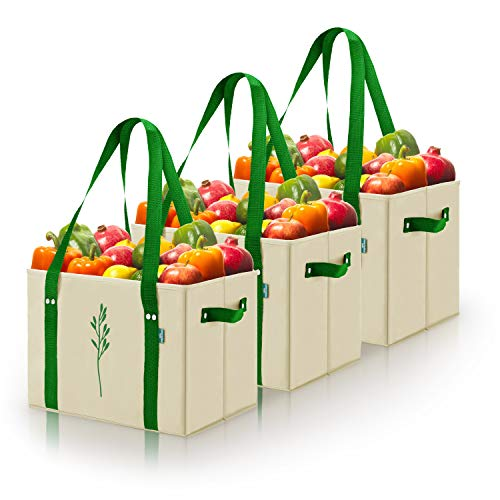 Green BD's Heavy Duty Reusable Grocery Bags with Reinforced Bottom. Collapsible and Spillover Proof Shopping Box Bags with added Side Handles. (Grocery Totes Set of 3)