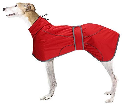 Brabtod Greyhound - Abrigo de invierno para perro de invierno a prueba de viento impermeable reversible abrigo de perro rojo-XL