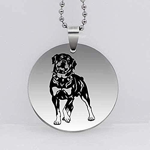 Yiffshunl Collar de Moda de Acero Inoxidable para Perro, Collar con Colgante, Accesorios para Animales, Regalo para Perros, Regalo para Amantes de Las Mascotas