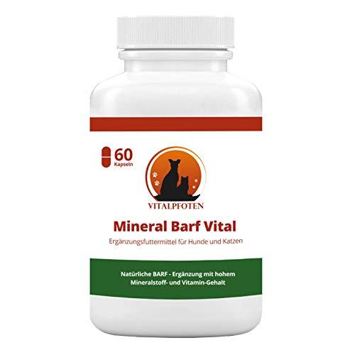 Vitalpfoten Moringa Oleifera - 60 cápsulas para Perros y Gatos (para alimentar prácticamente, fabricación Alemana)
