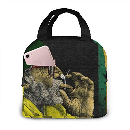 Hdadwy Bolsa de almuerzo para hombre de humo, bolsa de asas, caja de almuerzo, contenedor de almuerzo aislado para mujer, hombre