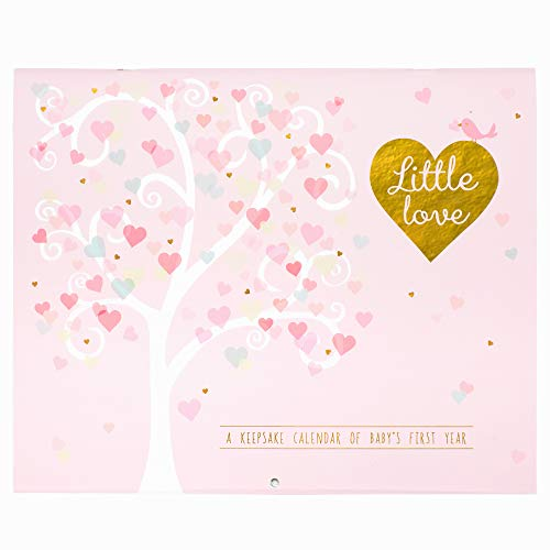 C.R. Gibson First Year Calendar, Stickers fourni, dimensions : 27,9 x 45,7 cm – fabriqué avec Amour