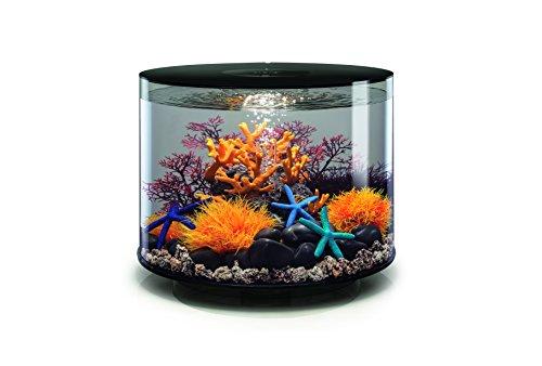OASE biOrb TUBE 35 LED Aquarium, 35 Liter - Aquarien Komplett-Set mit LED Beleuchtung und patentiertem Filter-System, Acryl-Becken in Schwarz