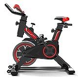 GJXJY Bicicleta EstáTicas para Fitness, Bici De Spinning, Bicicleta Profesional para Uso Domestico,Asiento Ajustable, Pantalla LCD,para Gimnasio De Oficina En Casa