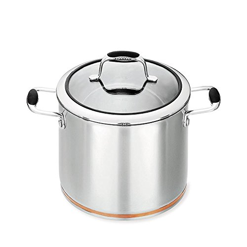 NEW Raco Luminescence S//Steel Covered Stockpot 24cm//5.7L
