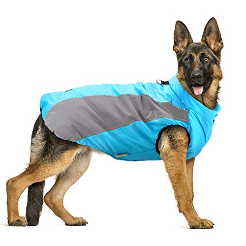 Didog Waterproof Dog Winter Coats ClothesReflective Dog Cold Weather Vest Jackets with Soft Warm FleeceWindproof Dog Apparel for Medium Large DogsBlue