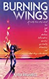 Burning Wings: A mostly true story about love, light, fear, darkness, hallucinations, narcotics, spirituality, debauchery, and that thing in the desert.