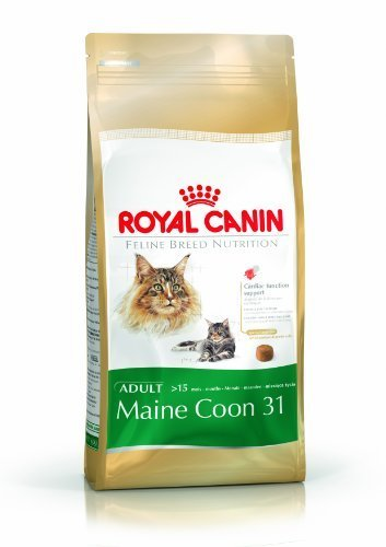 Royal Canin Feline Cat Maine Coon 31 4Kg Dry by Royal Canin