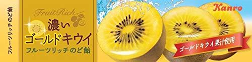 カンロ フルーツリッチのど飴濃いゴールドキウイ 11粒 ×10本
