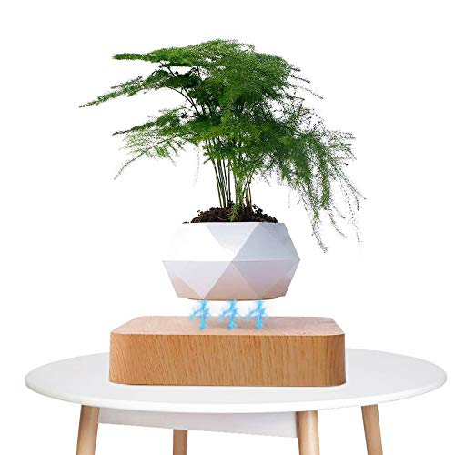 Levitating Plant Pot, Magnetic Levitation Floating Bonsai, Japanese Style Design for Flowers Or Bonsai, Creative Suspension Air Plant Pot for Home Decoration, Novelty Gifts (Wood)