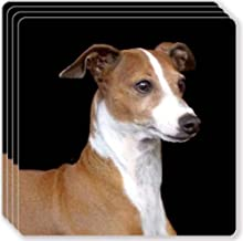 Canine Designs Italian Greyhound Rubber Coasters Set of 4