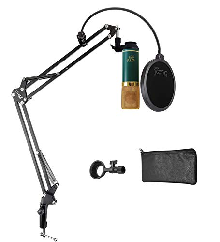 MXL V67G Large Capsule Condenser Microphone for Vocals, Guitars, Acoustic Instruments, and Drum Overheads Bundle with Blucoil Boom Arm Plus Pop Filter