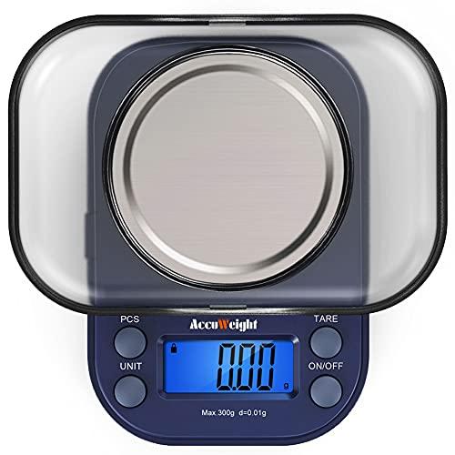 ACCUWEIGHT 255 Mini Balances de Laboratoire Balance de Poche 0,01g de Precision Électronique Balance de Bijoux avec Écran LCD Rétroéclairé, Fonction de Tare, Comptage de Pièces, 300g Maximum