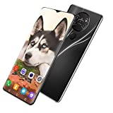 GQQG Teléfono Móvil Smartphone para Personas Mayores 215GB ROM Pantalla 6.7' (19:9) Water-Drop Screen Movil, 13MP+24MP, 4800mAh Batería, Android 10.0 Dual SIM (Color : Black)