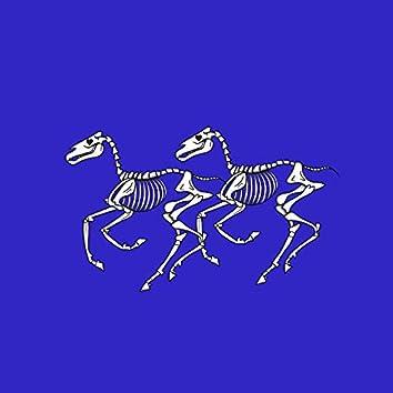 2 BLiND HORSES