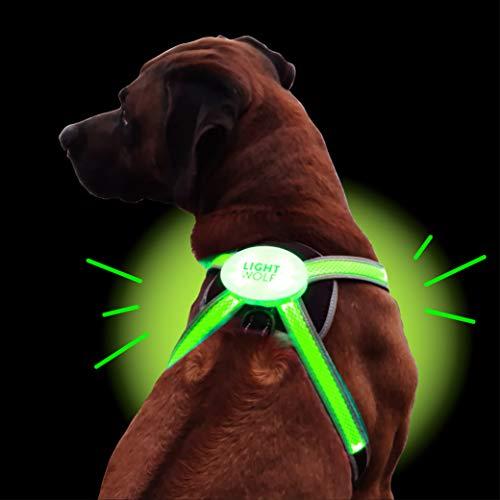 LED Hundegeschirr USB aufladbar mit 4 Farben | LED Hundeweste Leuchtend + reflektierend | Neues Modell mit Lichtleiter-Technik | Regenfestes Hundegeschirr für kleine und große Hunde