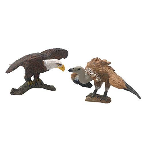 Homyl 2pcs Modèle Animal Miniature Aigle et Vautour pour Reconnaissance de Enfant Jouets Accessoires de Narration pour Enfants