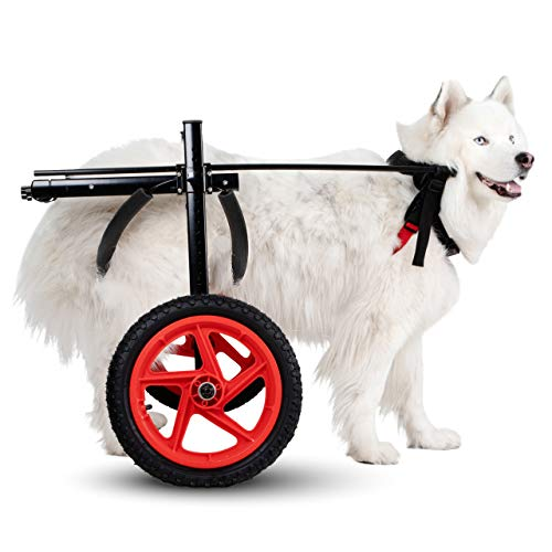 Best Friend Mobility PRO Dog Wheelchair for Back Legs Dog Cart is Easy Adjustable -Choose Size for Your Dog Ranging from Medium to XL -Dog Hind Leg Wheels to Assist in Healing & Give Mobility (Large)