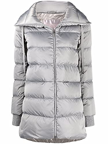 Herno Luxury Fashion Donna PI073DR121709406 Grigio Poliammide Piumino   Autunno-Inverno 21