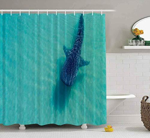 Babyparty-Vorhang, Duschvorhang für Badezimmer mit Haken Hai-Schwimmkamera im Aquarium Silvertip Richtung Sentosa Singapur, umweltfreundlich, Keine Oder, wasserdicht