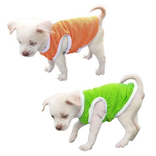 QiCheng & LYS Abbigliamento per animali, T-shirt per cani minimalista, adorabili magliette, T-shirt sportive, 100% cotone, abbigliamento estivo a maniche corte (Arancio/Verde, L)
