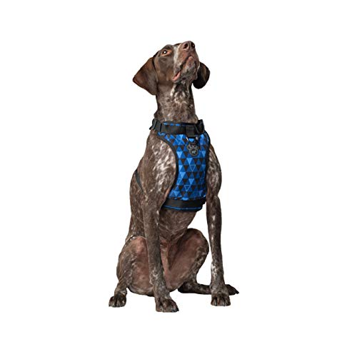 Canada Pooch | Everything Dog Harness | No-Pull Adjustable Dog Harness | Geo - Size L, L