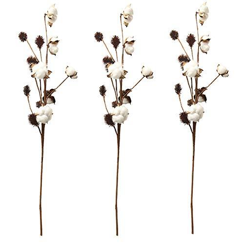 Aisamco Paquete de 3 Tallos de algodón Decoración de Granja Selecciones Florales Relleno de florero de Estilo rústico Ramas de algodón rústico 68cm por Tallo Decoración Flor