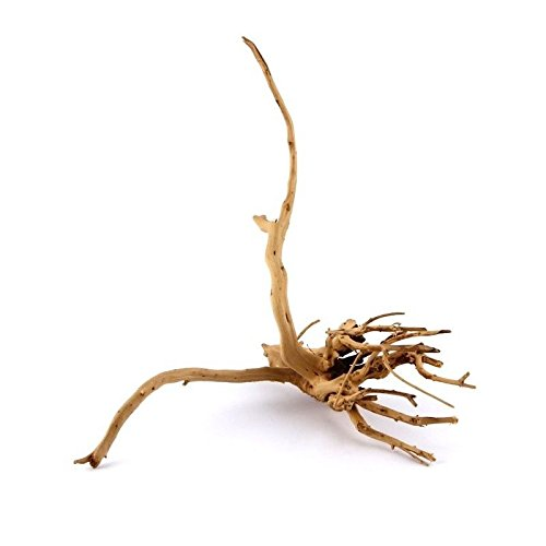 TM Aquatix rot Moor Holz Root (x1)–Größe S 15–20cm–(Aquascaping Moorkienholz Treibholz) Nano Aquarium