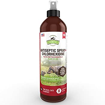 Chlorhexidine Spray for Dogs Cats - Ketoconazole Aloe - 8 oz - Cat Dog Hot Spot Treatment Mange Ringworm Yeast Infection Itching Skin Relief Allergy Itch Acne Antibacterial Antifungal