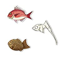 ステッカー アウトドア フィッシング お魚ステッカー 3種セット12 真鯛 鯛の鯛 タイヤキ 【M】