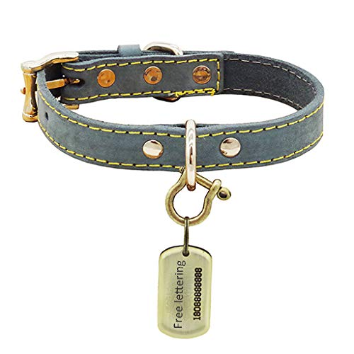 COLLAR Custom Engraved Pet ID Tags Personalized Leather Pet Best for Medium Large and Extra Large Dogs