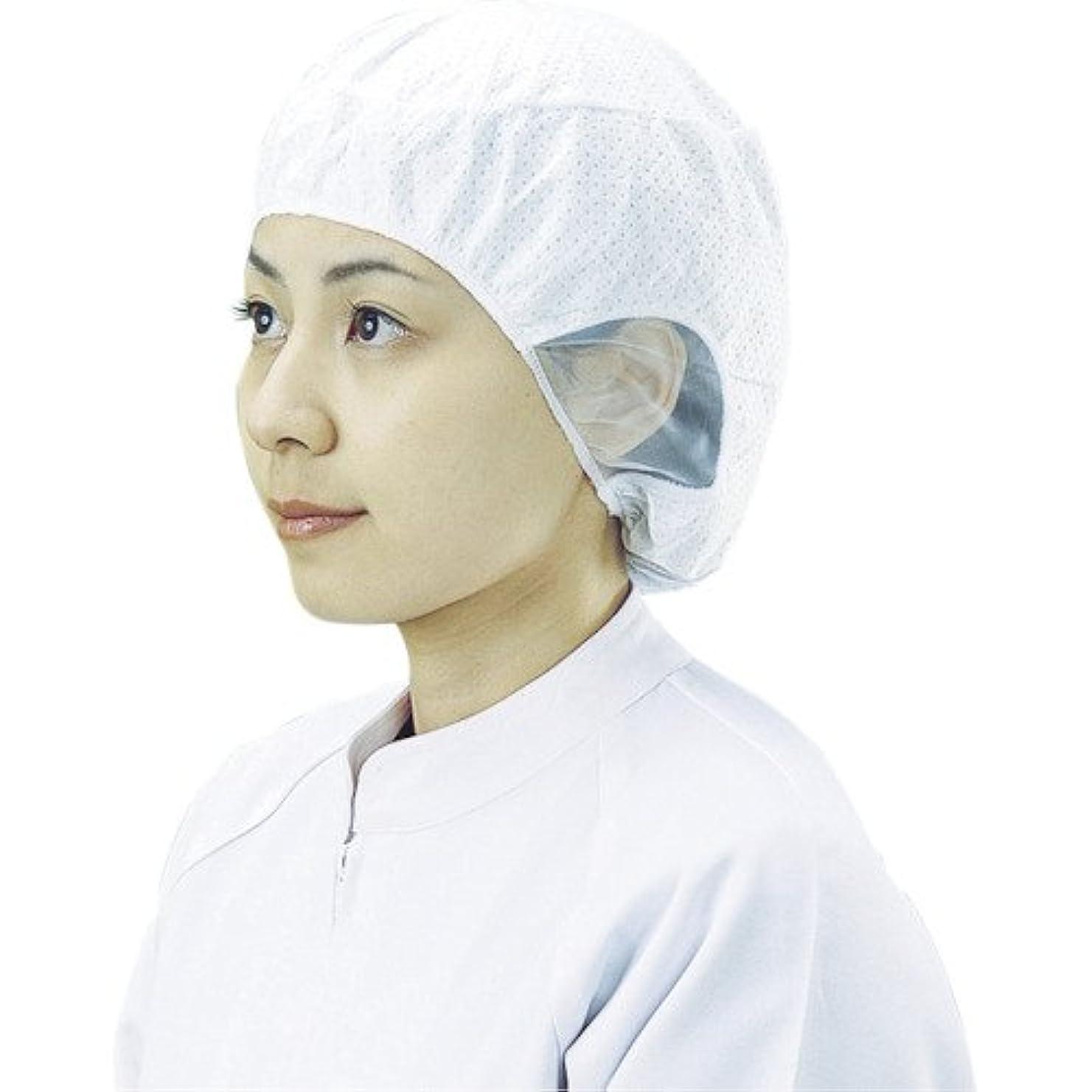 照らすスムーズに医薬品宇都宮製作 電石帽SR-1 L(20枚入) SR-1L