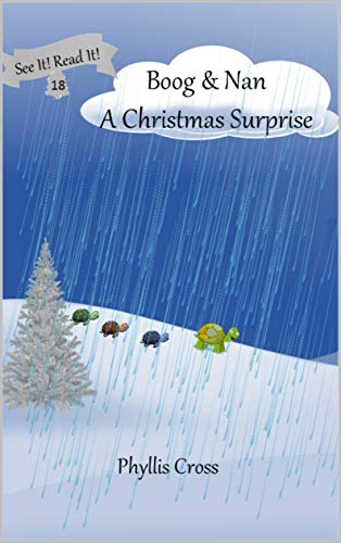 Boog and Nan A Christmas Surprise (See It! Read It!) (English Edition)