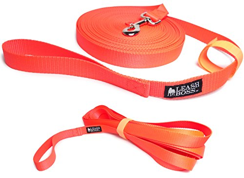 Leashboss Long Trainer - 50 Foot Lead - 1 Inch Nylon Long Dog Training Leash with Storage Strap - K9 Recall - for Large Dogs (50 Foot, 1 in, Orange)