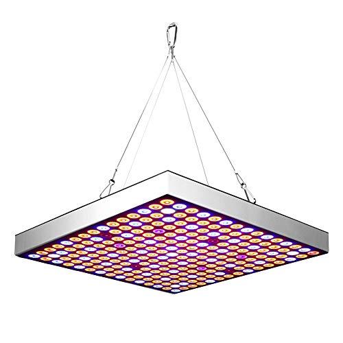 Plant LED-groeilicht, 45W LED volledig spectrum plantvullingslicht groeilichtgroeilamp voor kas tent kamer succulente zaailingen bloeiende hydrocultuur tuin(110-240V)