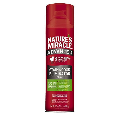 Nature's Miracle Pet Stain and Odor Remover Foam Aerosol Sprays