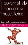 l'essentiel de l'anatomie musculaire: Les muscles striés squelettiques (French Edition)