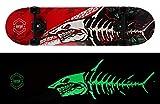 Amrgot Skateboards Pro Night Light 31 inches Complete Skateboards for Teens, Beginners, Girls,Boys,Kids,Adults