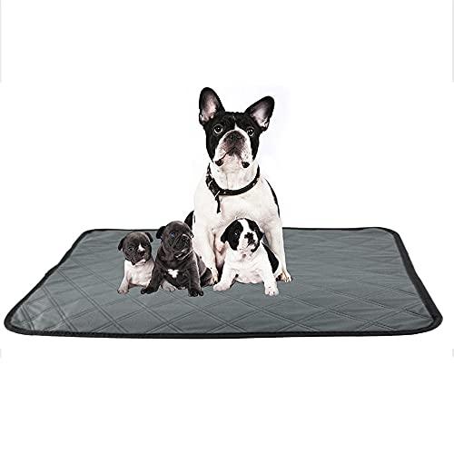 VRQG 2 Puppy Pads -Toallitas de Entrenamiento para Mascotas,...