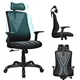 Home Office Chair Ergonomic Desk Chair High Back Mesh Computer Chair with Adjustable Height and Elastic Lumbar Support,Thick Seat Cushion,Executive Swivel Task Chair for Conference Room (Black, ML)