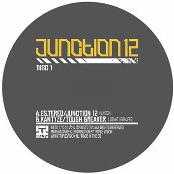 Junction 12 Sampler 1