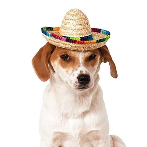 Ogquaton Haustier Sommer Stroh geflochten Sonnenblende Sombrero Hut, breite Krempe, Regenbogenfarbener Rand Strand Kappe Outdoor Hund Katze Schatten Zubehör Kreativ und nützlich