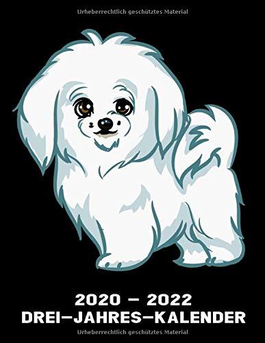 2020 - 2022 Drei - Jahres - Kalender: Malteser Hund - Hunde Kalender Terminplaner Buch - Jahreskalender - Wochenkalender - Jahresplaner