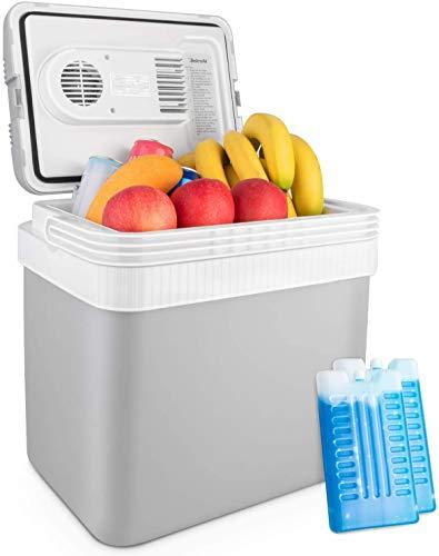 AstroAI Tragbarer 24L Kühlbox Auto Minibar, Thermo-Elektrische Mini-Kühlschrank mit 2 Ice Pack 12 Volt, Ideal für Auto, Camping, LKW,Grau