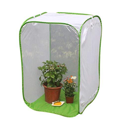 EMVANV Insektenkäfig-Netz, Pflanzen-Gewächshaus, Faltbarer Insektenkäfig, Schmetterlings-Krefig, mit Reißverschluss, Insekten-, Monarch-, Schmetterlings-Netz, Netz-Netz, Gewächshaus