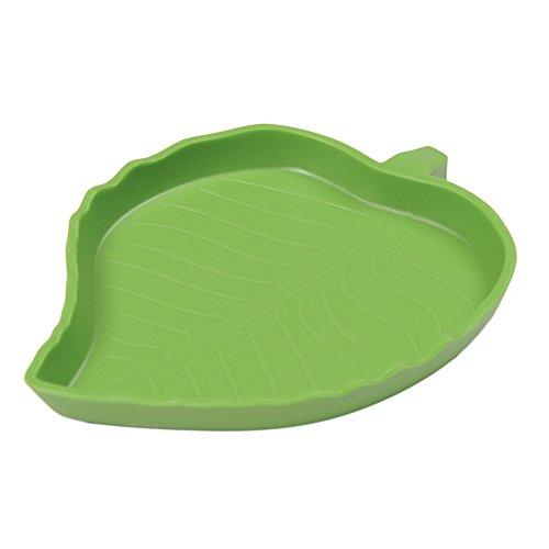 Sundautumn - Vaschetta per tartaruga e rettili a forma di foglia (taglia S)